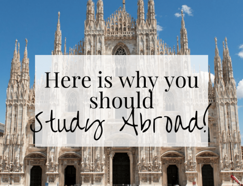 Here's Why You Should Study Abroad!