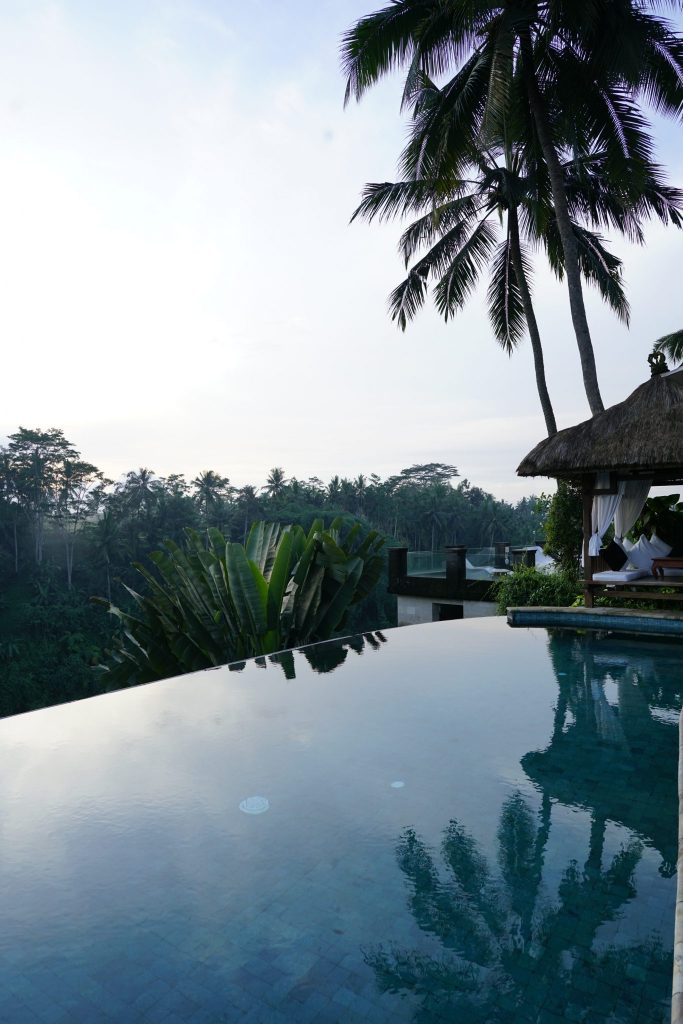 The Viceroy Bali main pool area at sunrise overlooking the jungle