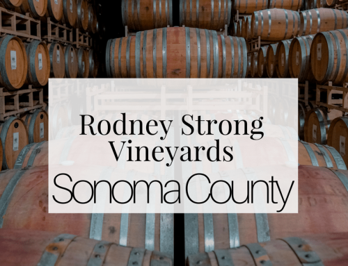 Visiting the Spectacular Sonoma County, CA: Rodney Strong Vineyards