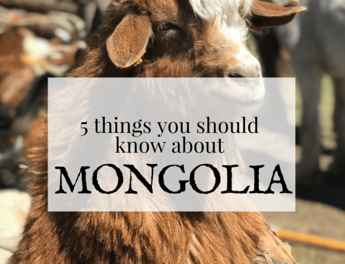 MONGOLIA: 5 Things You Need to Know, And Why You Should Go!
