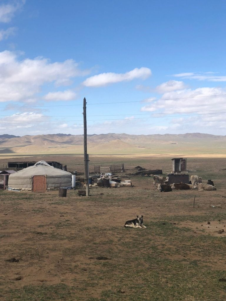 Mongolian yurt in the valley