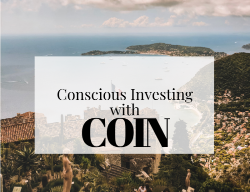 What is Conscious Investing and how can Beginners Reach Financial Stability?