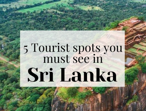 5 Sri Lanka Tourist Spots You Must Visit